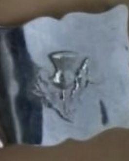 Silver Thistle Belt Buckle